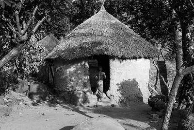 Cameroon: North