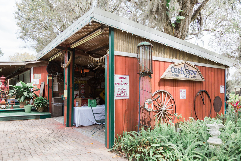 ELP0312 DeRoxtro Oak-K Farm Lakeland wedding-32.jpg