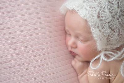 Porter Newborn