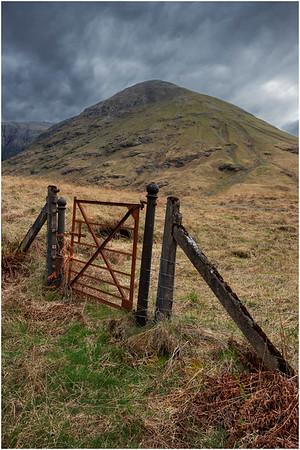 Scotland Moors