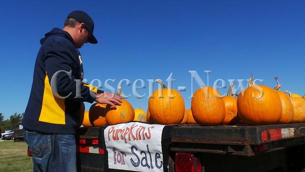 09-22-15 NEWS TL Pumpkins
