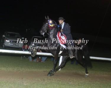 CLASS 45  RACKING HORSE STAKE  AD  TC