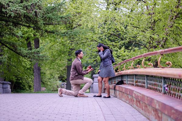 Jeev &  Anila Proposal