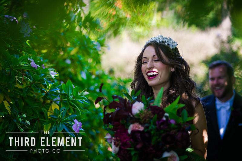 Third Element Photo Co Lina + Rett Carmel Bay Area Wedding Photographer_0028.jpg