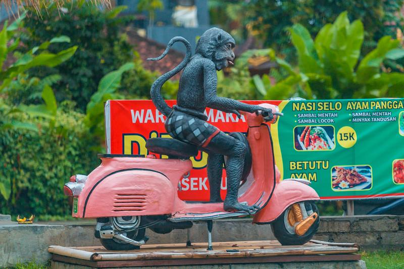 Bali (269).jpg