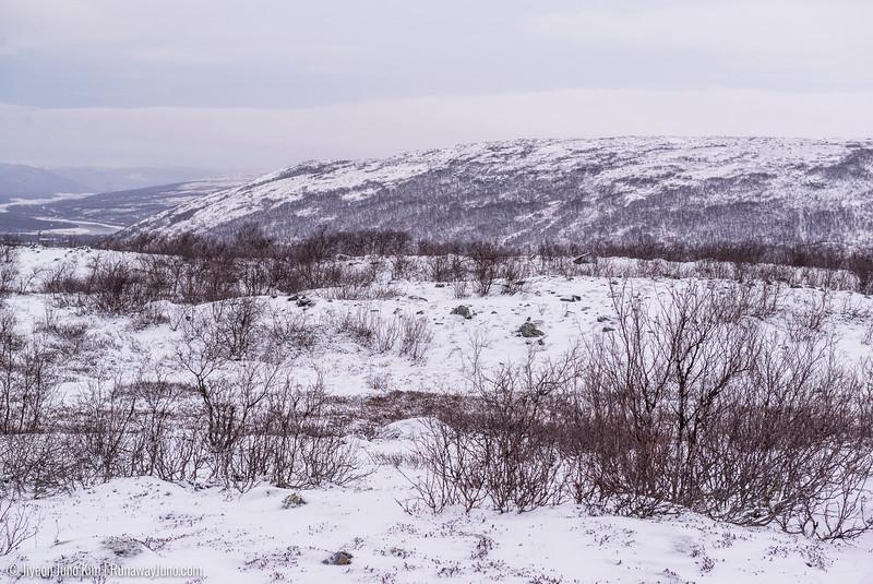 Nov.11_Utsjoki-6105839.jpg