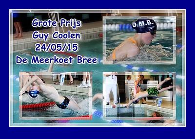 GP  Guy Coolen @ De Meerkoet Bree 24/05/15  (deel 2)