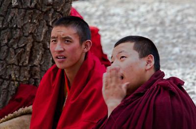 (4) 2011 Autumn, Tibet, China