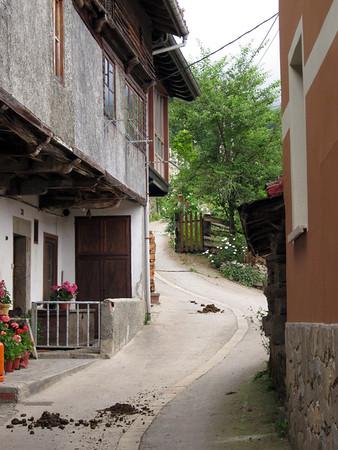 Parque de Redes, Asturias, 2016