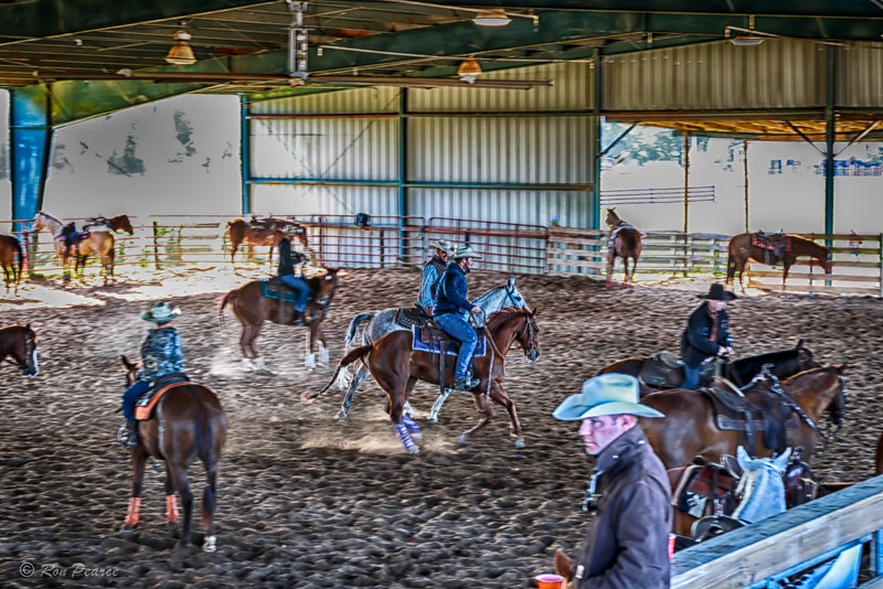 Ranch Sorting National Championship- Lady Lake Equestrian Center