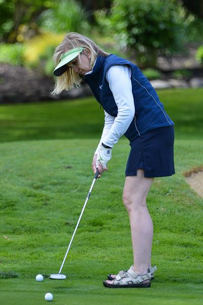 Golf Classic 2017 (11 of 219).jpg