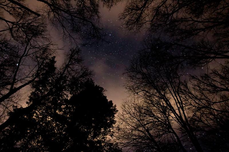 Star Night March 24 JPEG.jpg