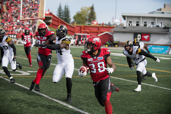 Stamps vs Tiger Cats