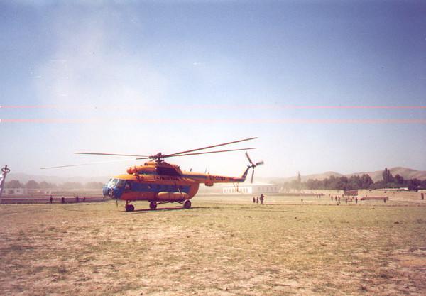 Afghan Fly