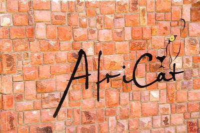 Africat sign, Namibia