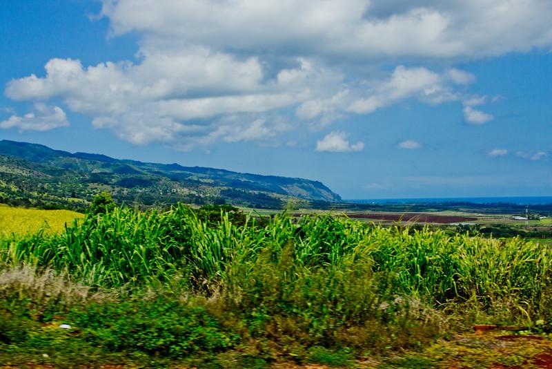 Journey into Oahu Photograph 103