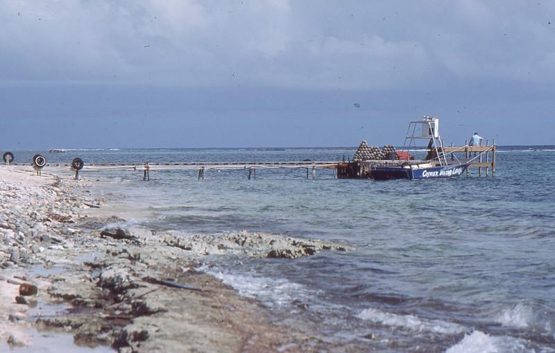 2013-Cayman-021.jpg