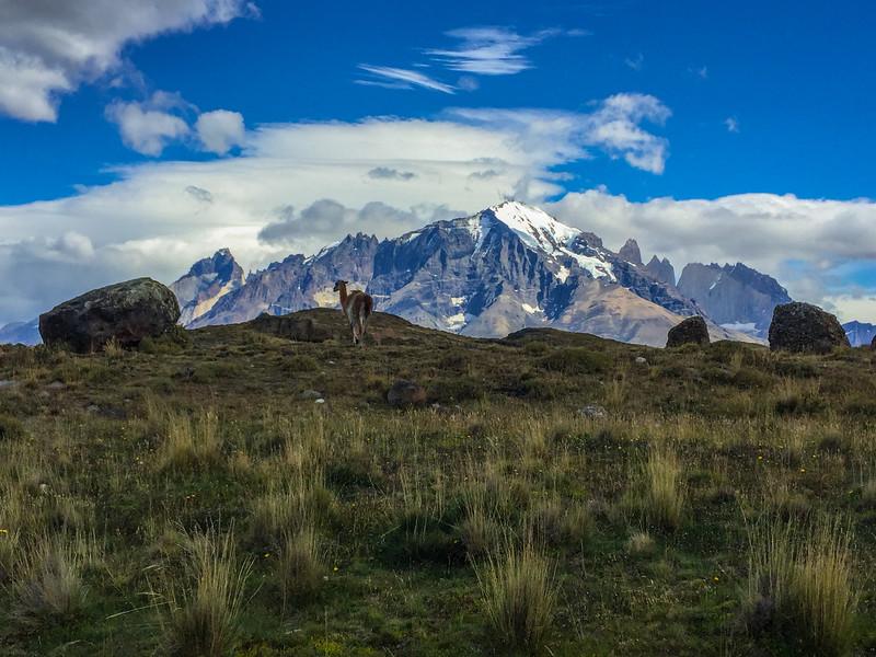 Patagonia18iphone-7127.jpg