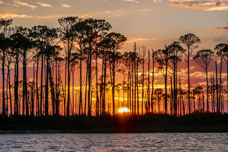 Apalachiacola-65.jpg