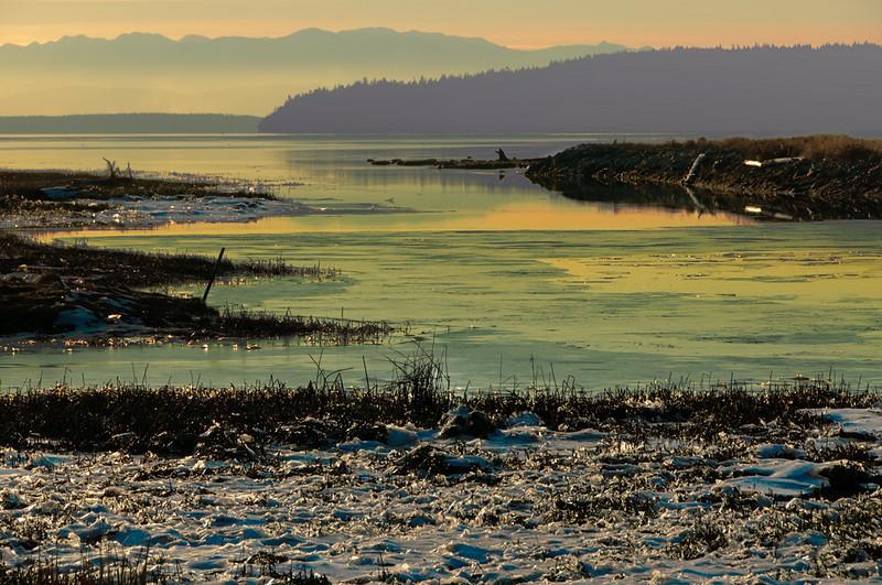 fir_island_scenes_14159_beginning_sunset-sm.jpg