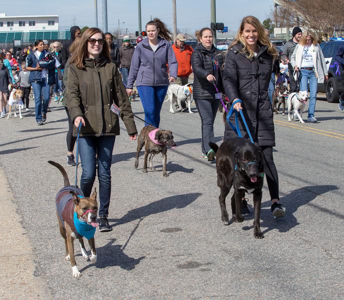 Richmond Spca Dog Jog 2018-742.jpg