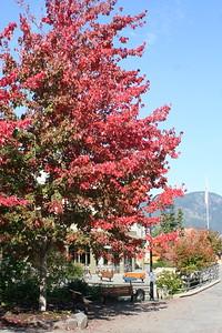 Day 13: Whistler - 1 October 2008