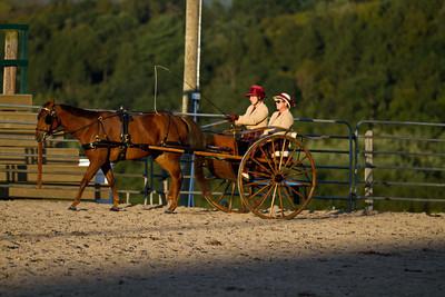 4H Distircts 09/17/11 Pleasure Horse Driving