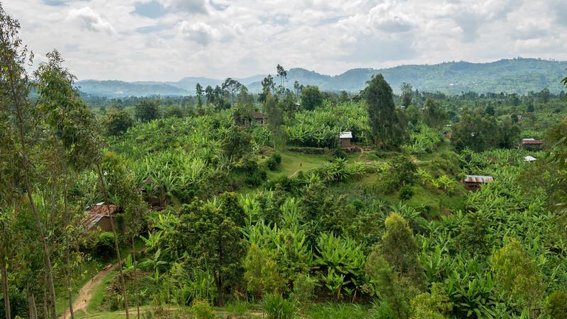 Musanze-Rwanda-9.jpg