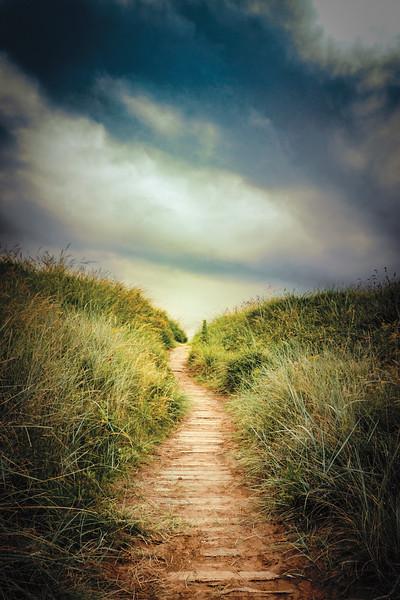 Pathbeach_16x24_Landscape_0729_12.jpg