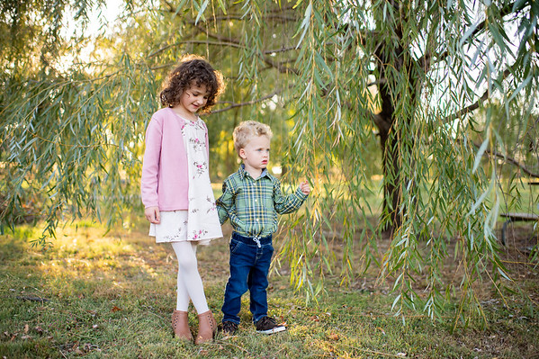 The Grimley Family - Fall Mini 2019