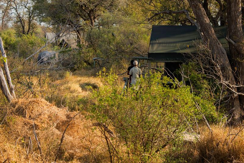 2014-08Aug-Okavango Masters-82-Edit.jpg
