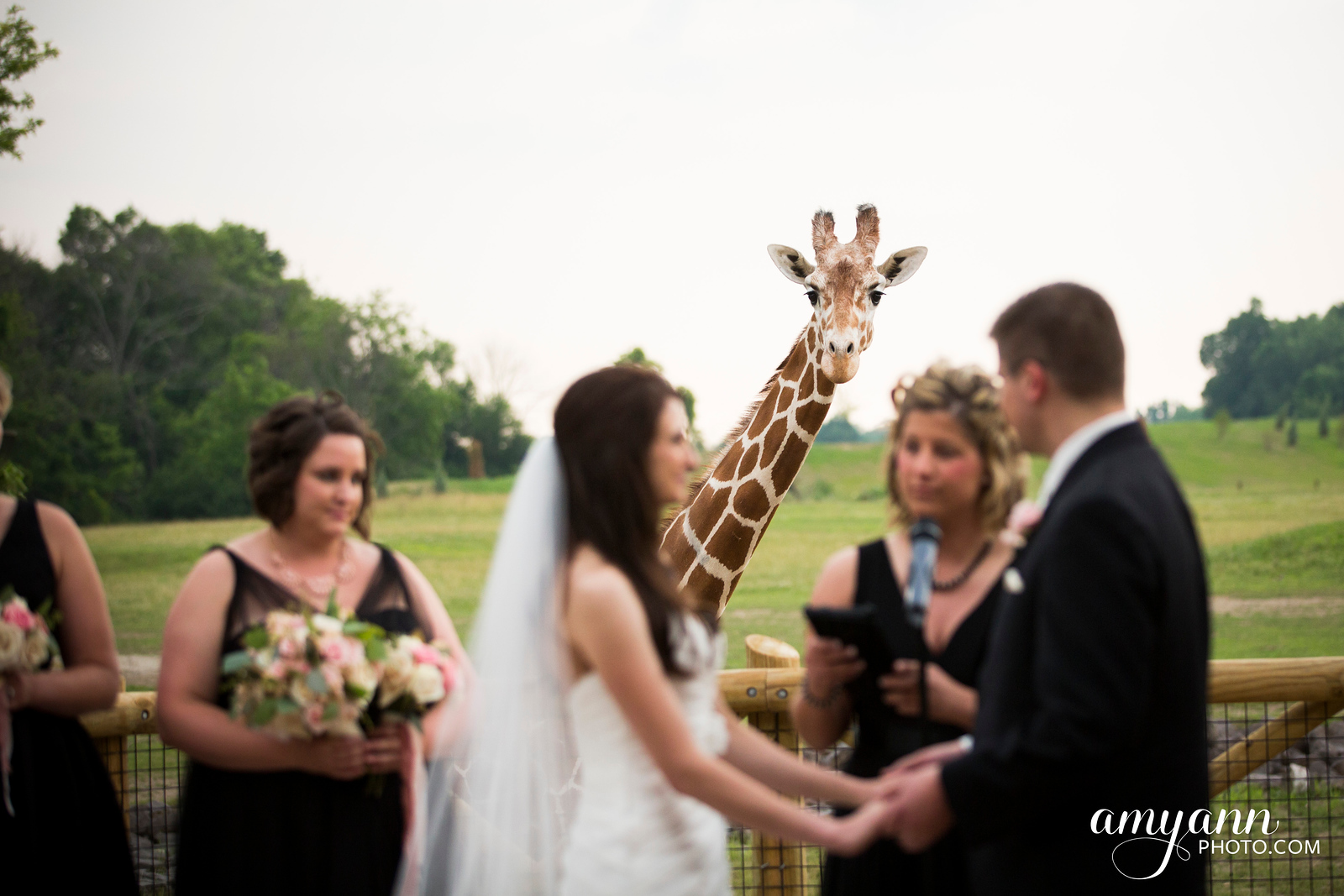 jillchris_weddingblog035