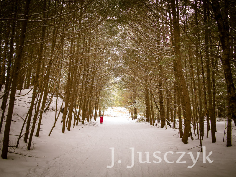 Jusczyk2015-1325.jpg