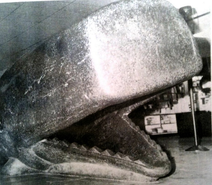Lincoln Sq Whale