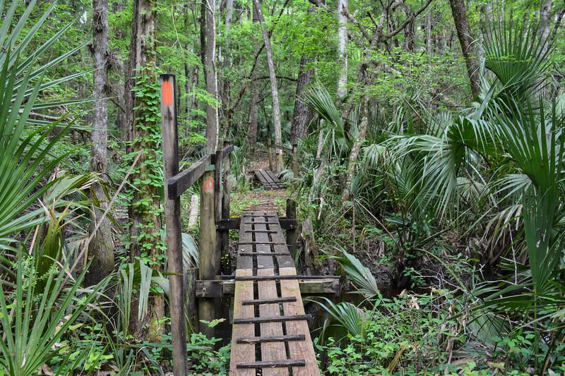 NE FLORIDA Rice Creek bridges.jpg