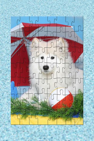 Cher-Puzzle.jpg