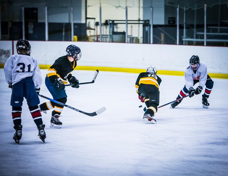Bruins2-156.jpg