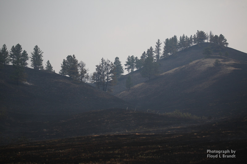 Havre Daily News/Floyd Brandt   Fire burned land on both sides of Sucker Creek Road Thursday.