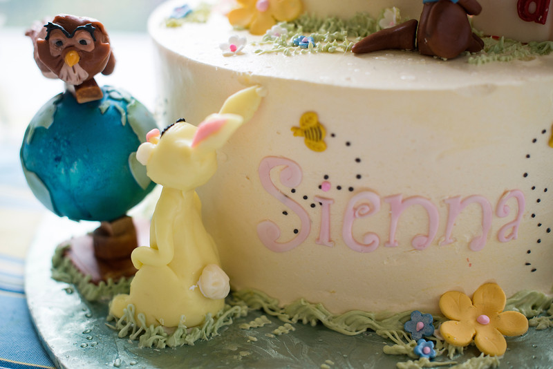 sienna-birthday-party-426-05142014.jpg