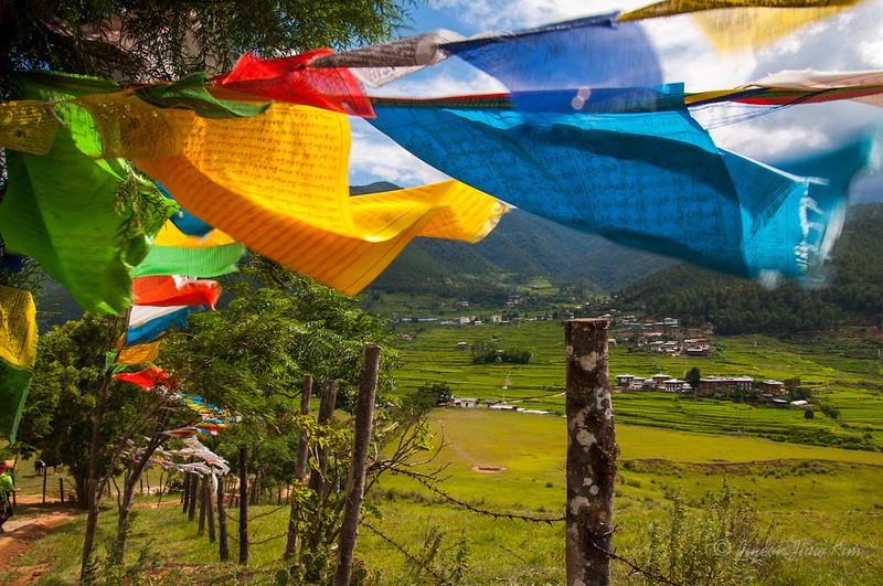 Bhutan-Punakha-8228.jpg