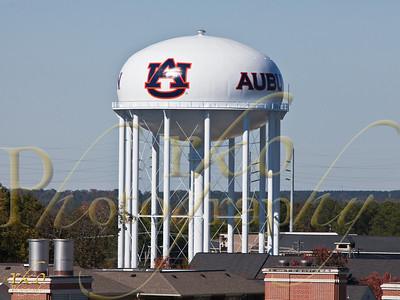 Auburn Calendar Candidates