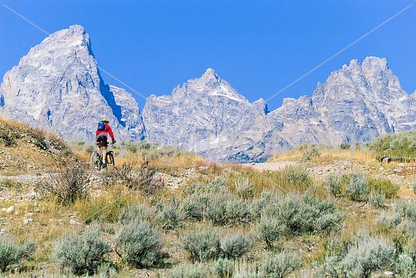Tetons - Mountain biker on River Road in Grand Teton Nat'l Park, Wyoming