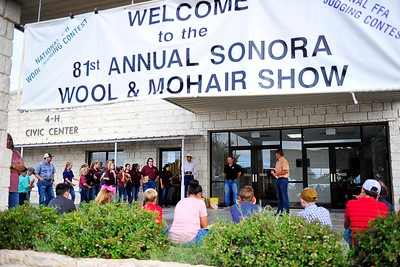81st Annual Wool Show