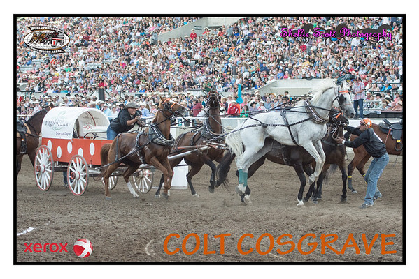 2015 - WPCA Tour Posters