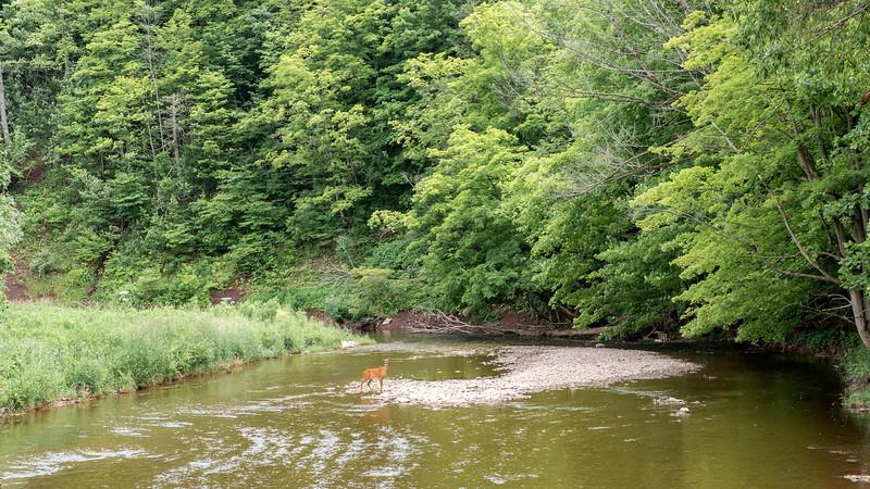 Ontario-Oakville-Sixteen-Mile-Creek-Trail29.jpg