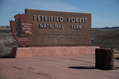Petrified Forest National Park - Rainbow Forest