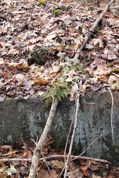rock pile 113019.jpg