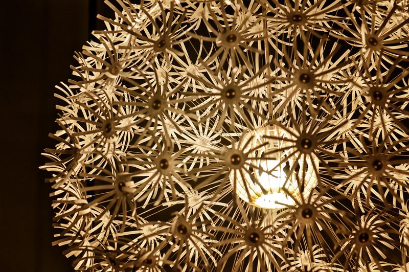 2011-PLamb_20111026-870-Edit.jpg
