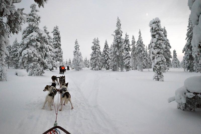 Finland_160116_50.jpg