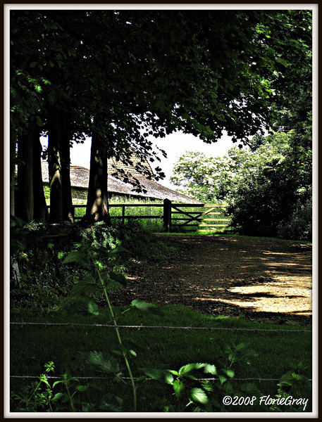 Beyond the Fences   ©2008 FlorieGray